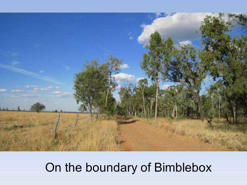 On the boundary of Bimblebox