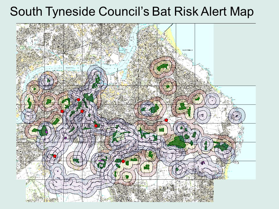 South Tyneside Council's Bat Risk Alert Map