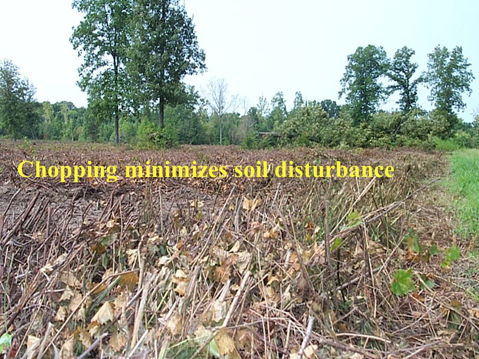 Chopping minimizes soil disturbance
