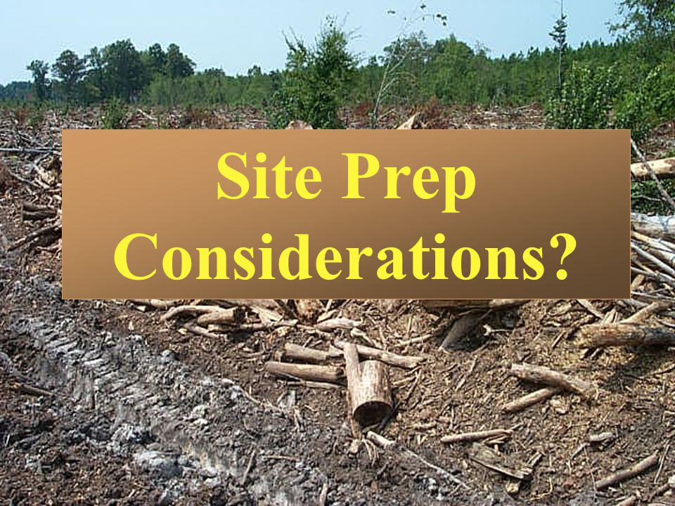 Site Prep Considerations
