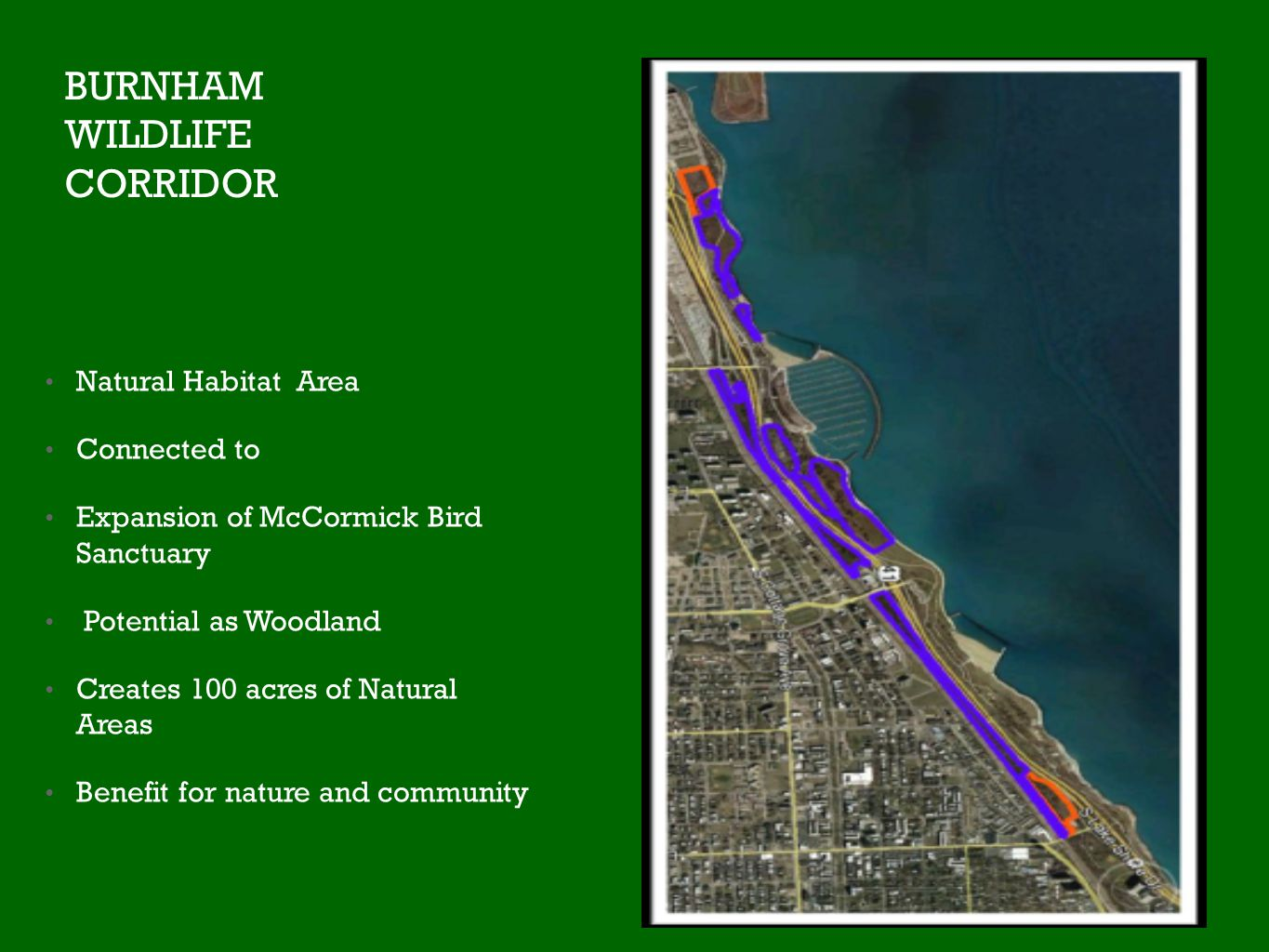 BURNHAM WILDLIFE CORRIDOR Natural Habitat Area Connected to Expansion of McCormick Bird Sanctuary Potential as Woodland Creates 100 acres of Natural Areas Benefit for nature and community