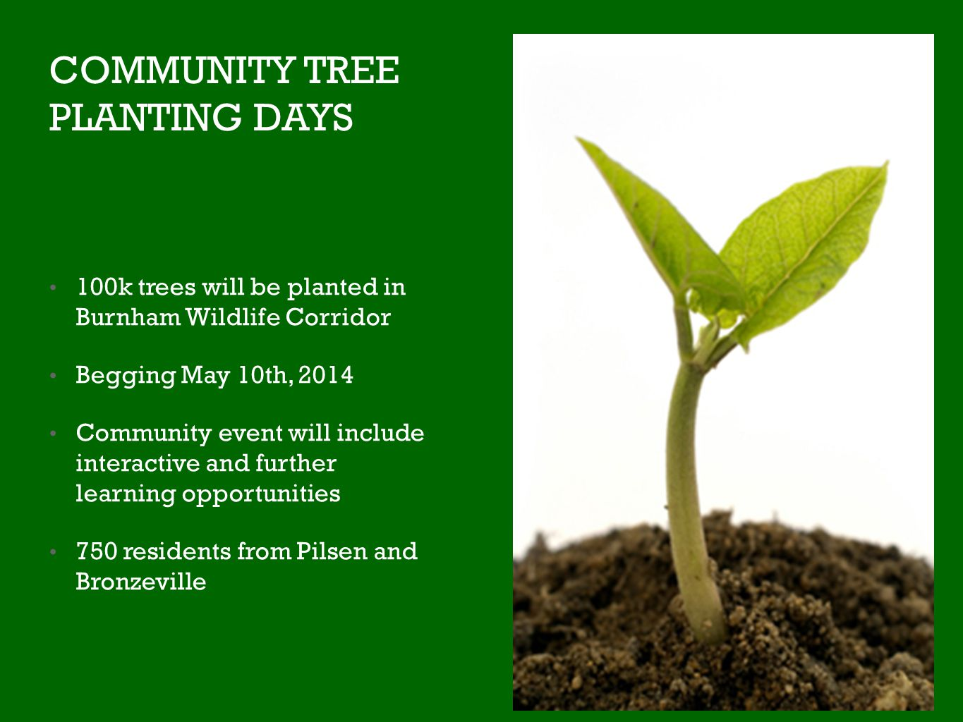 COMMUNITY TREE PLANTING DAYS 100k trees will be planted in Burnham Wildlife Corridor Begging May 10th, 2014 Community event will include interactive and further learning opportunities 750 residents from Pilsen and Bronzeville
