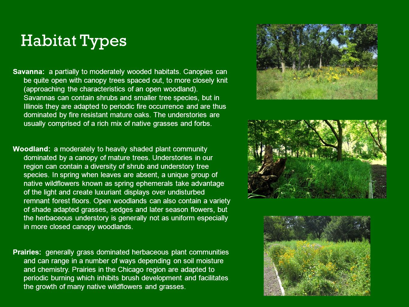 Habitat Types Savanna: a partially to moderately wooded habitats. Canopies can be quite open with canopy trees spaced out, to more closely knit (appro