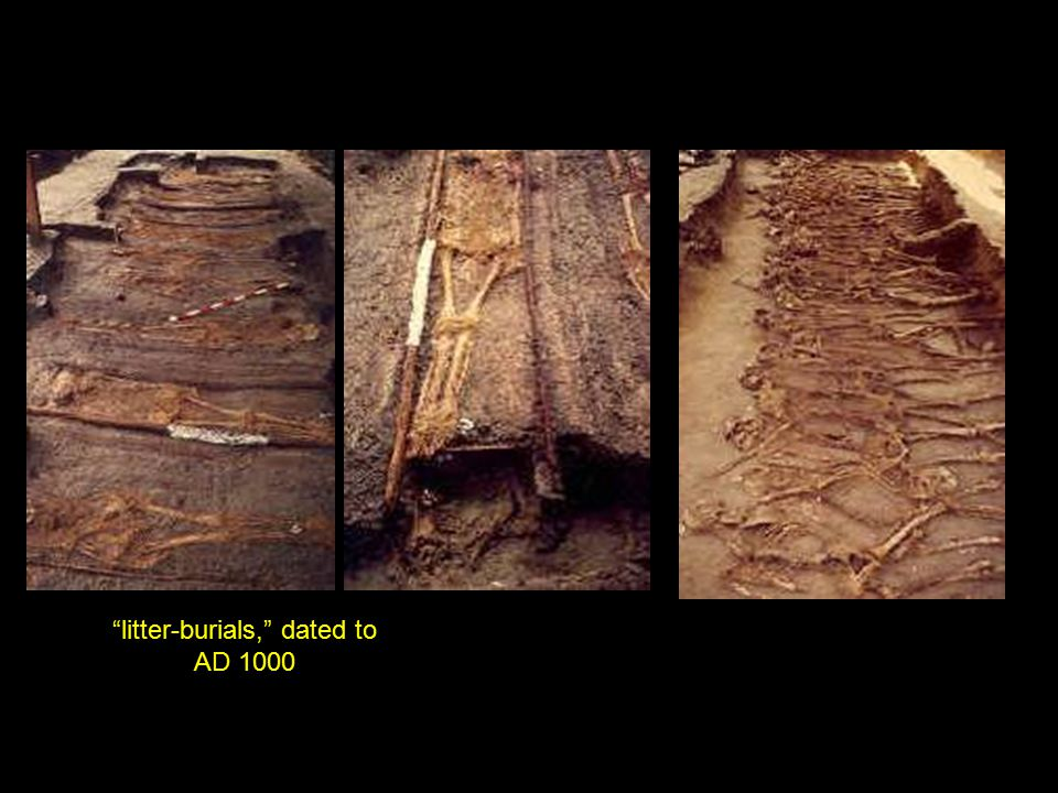 """""""litter-burials,"""" dated to AD 1000"""
