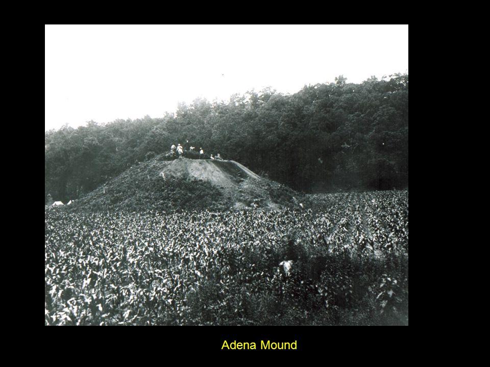 Wooden burial structure in Adena earthen mound