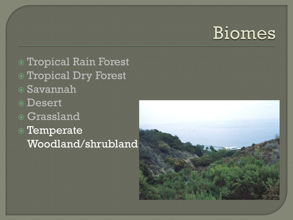  Tropical Rain Forest  Tropical Dry Forest  Savannah  Desert  Grassland  Temperate Woodland/shrubland