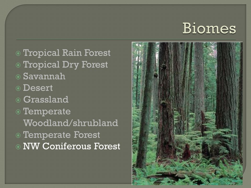  Tropical Rain Forest  Tropical Dry Forest  Savannah  Desert  Grassland  Temperate Woodland/shrubland  Temperate Forest  NW Coniferous Forest