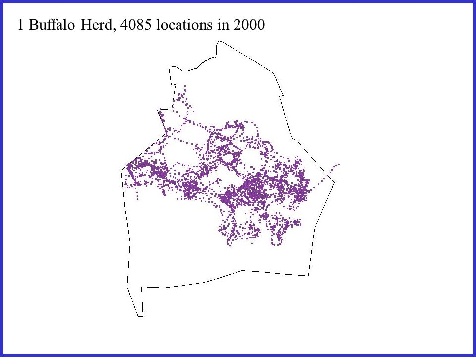 1 Buffalo Herd, 4085 locations in 2000