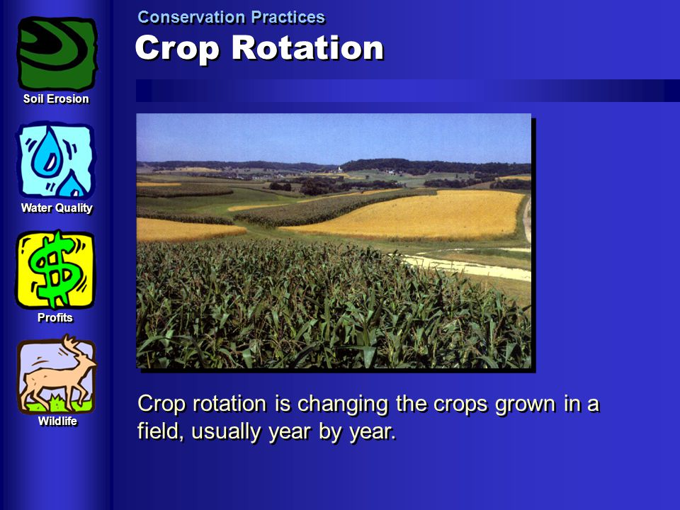Crop Rotation Conservation Practices Crop rotation is changing the crops grown in a field, usually year by year. Soil Erosion Water Quality ProfitsPro