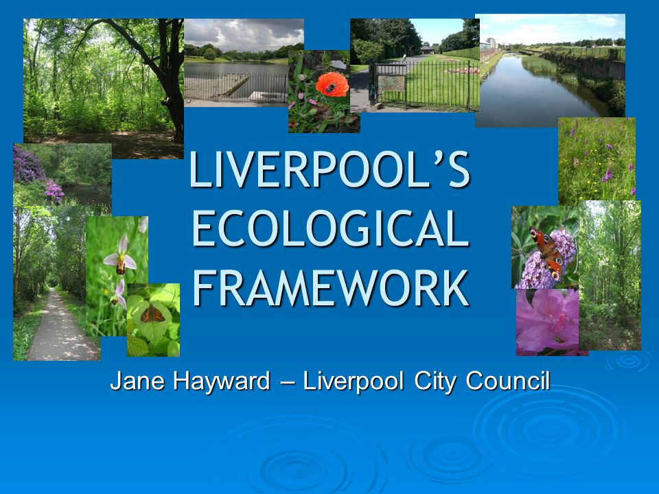 LIVERPOOL'S ECOLOGICAL FRAMEWORK Jane Hayward – Liverpool City Council