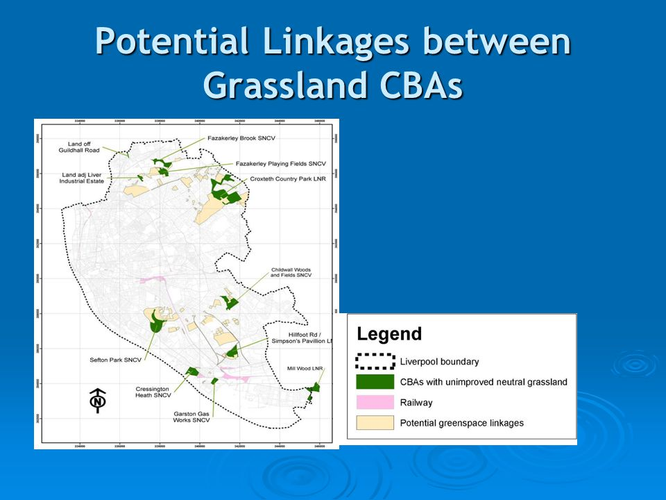 Potential Linkages between Grassland CBAs