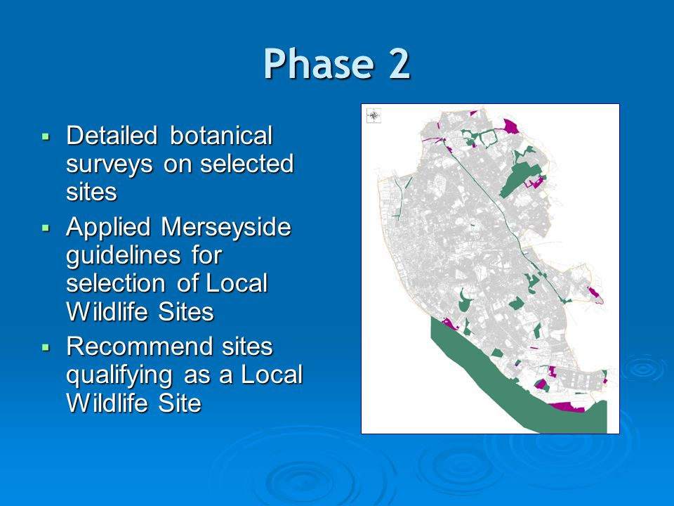 Phase 2  Detailed botanical surveys on selected sites  Applied Merseyside guidelines for selection of Local Wildlife Sites  Recommend sites qualifying as a Local Wildlife Site