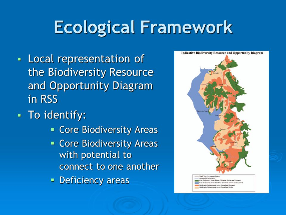 Ecological Framework  Local representation of the Biodiversity Resource and Opportunity Diagram in RSS  To identify:  Core Biodiversity Areas  Core Biodiversity Areas with potential to connect to one another  Deficiency areas