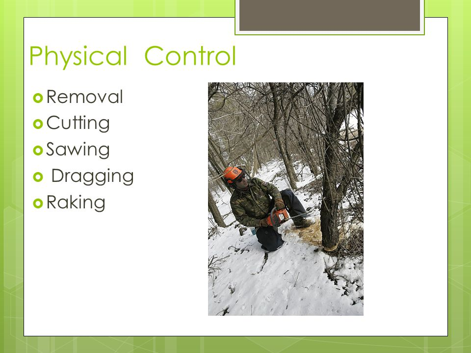 Physical Control  Removal  Cutting  Sawing  Dragging  Raking
