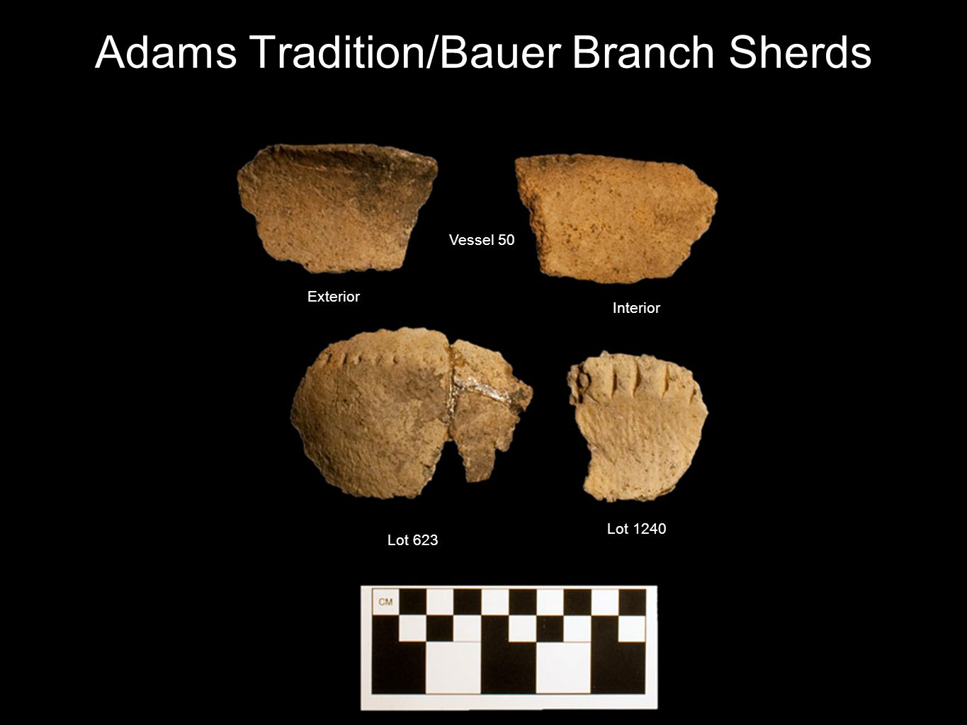 Adams Tradition/Bauer Branch Sherds Interior Exterior Vessel 50 Lot 623 Lot 1240