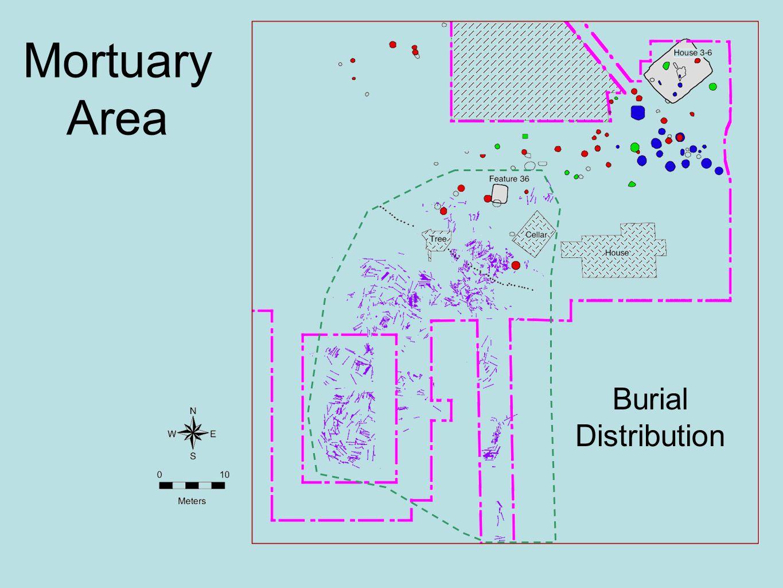 Mortuary Area Burial Distribution