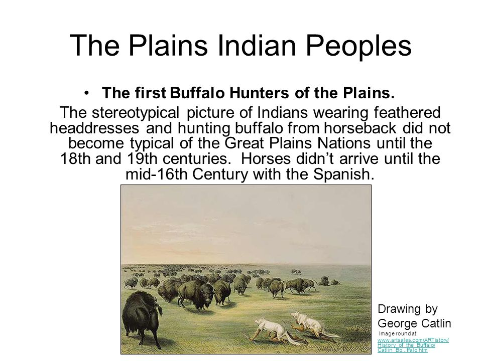 The Plains Indian Peoples The first Buffalo Hunters of the Plains. The stereotypical picture of Indians wearing feathered headdresses and hunting buff