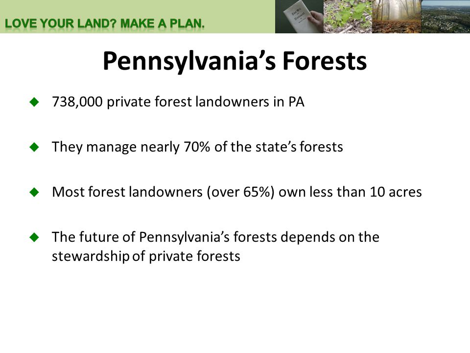 Pennsylvania's Forests  738,000 private forest landowners in PA  They manage nearly 70% of the state's forests  Most forest landowners (over 65%) o