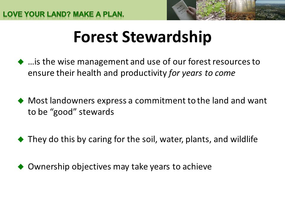 Forest Stewardship  …is the wise management and use of our forest resources to ensure their health and productivity for years to come  Most landowners express a commitment to the land and want to be good stewards  They do this by caring for the soil, water, plants, and wildlife  Ownership objectives may take years to achieve