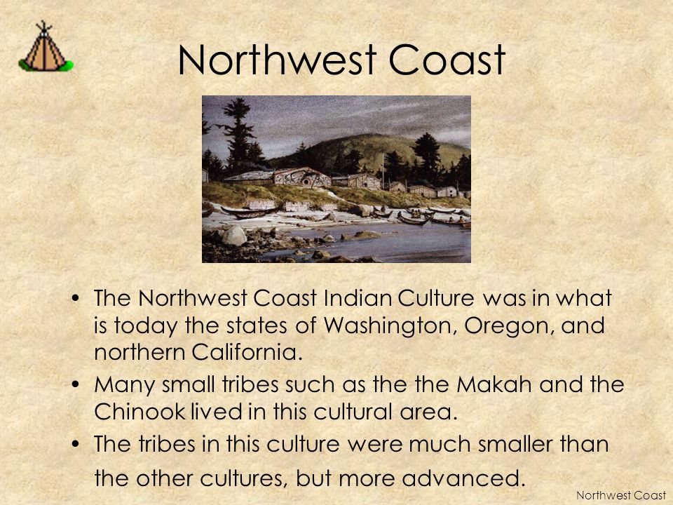 HOW THEY LIVED The peoples of the Northwest Coast lived in an area filled with resources trees - wood used to make houses inner bark used to make baskets, rope and clothes Because food was plentiful the peoples of the Northwest Coast built permanent villages.