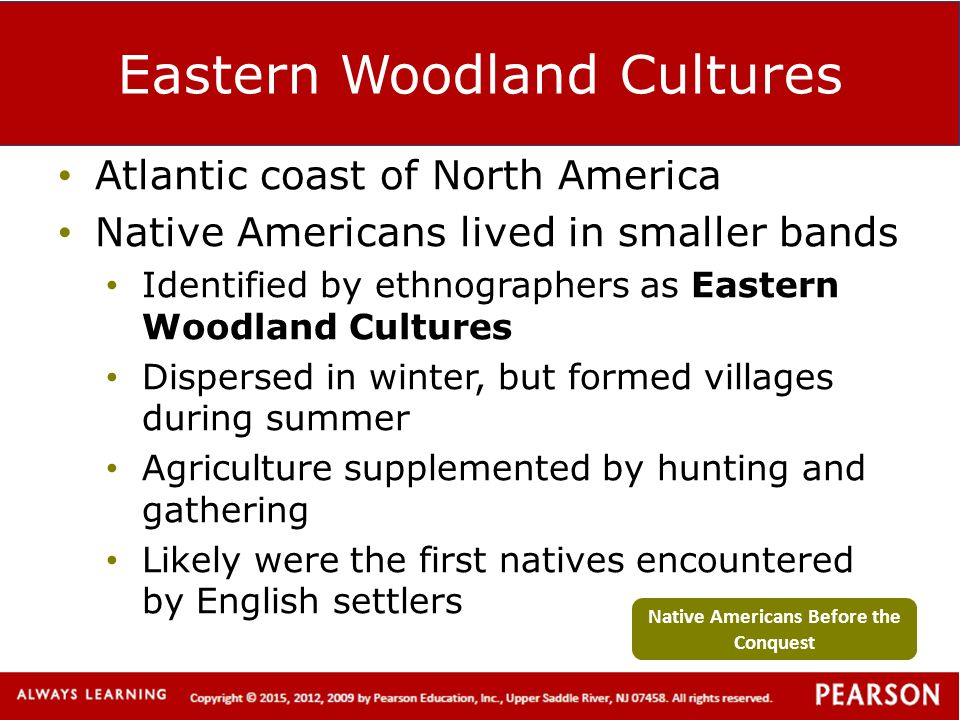 Eastern Woodland Cultures Atlantic coast of North America Native Americans lived in smaller bands Identified by ethnographers as Eastern Woodland Cult