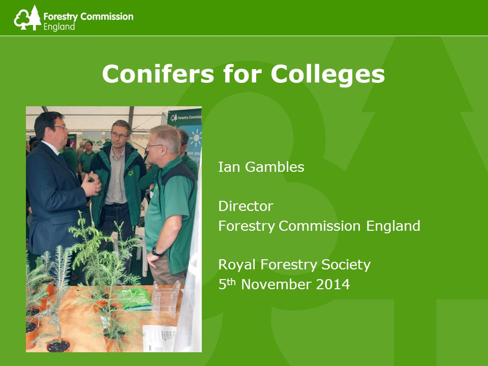 Conifers for Colleges 2 What I am going to cover The conifer challenge… Pests and diseases Climate change Anti-conifer sentiment Loss of silvicultural skills … and what we can all do about it