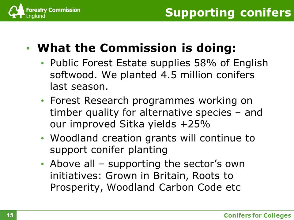Conifers for Colleges 15 Supporting conifers What the Commission is doing: Public Forest Estate supplies 58% of English softwood.