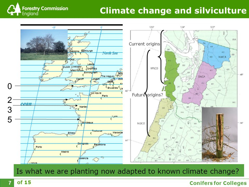 Conifers for Colleges 7 Climate change and silviculture 3 5 0 2 of 15 Current origins Future origins.