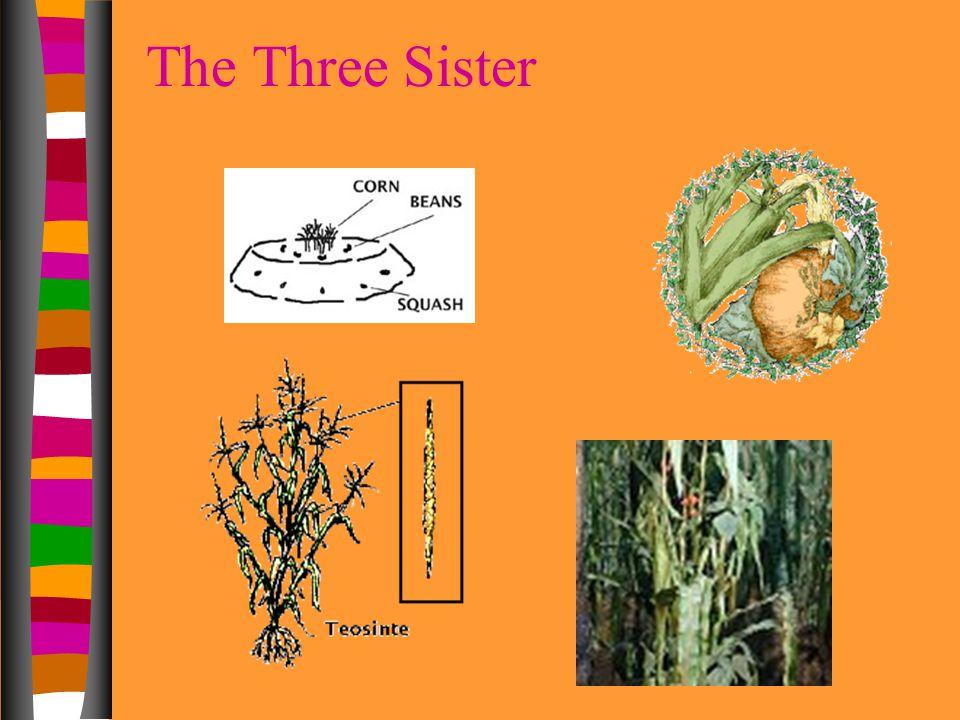 The Three Sister