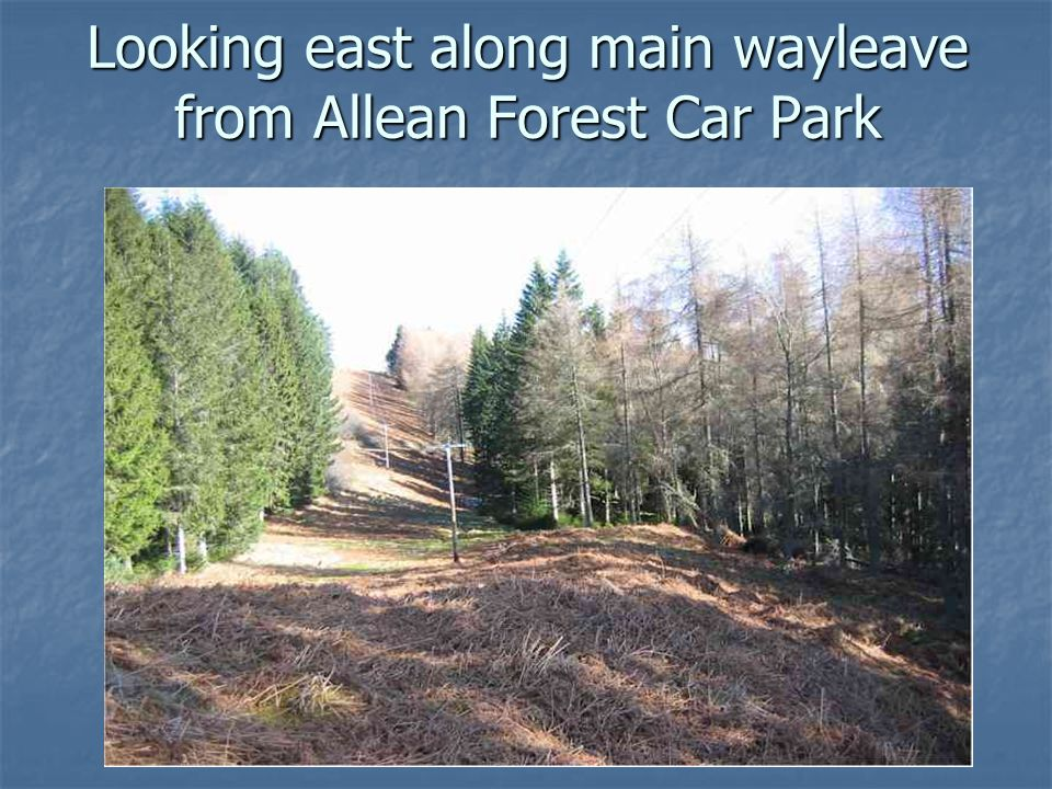 Looking east along main wayleave from Allean Forest Car Park