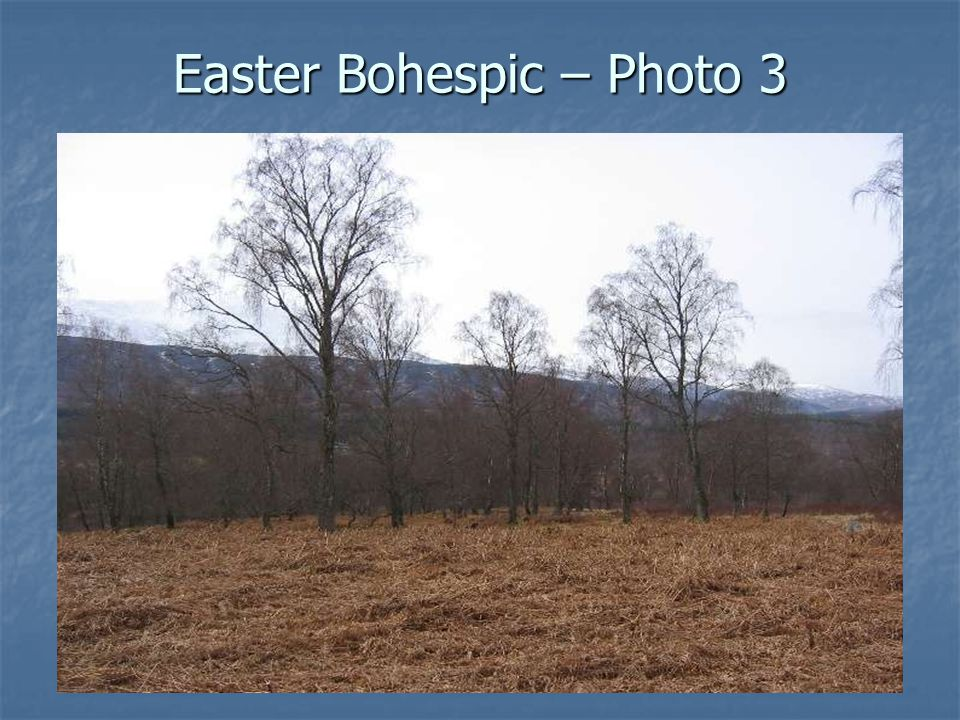 Easter Bohespic – Photo 3