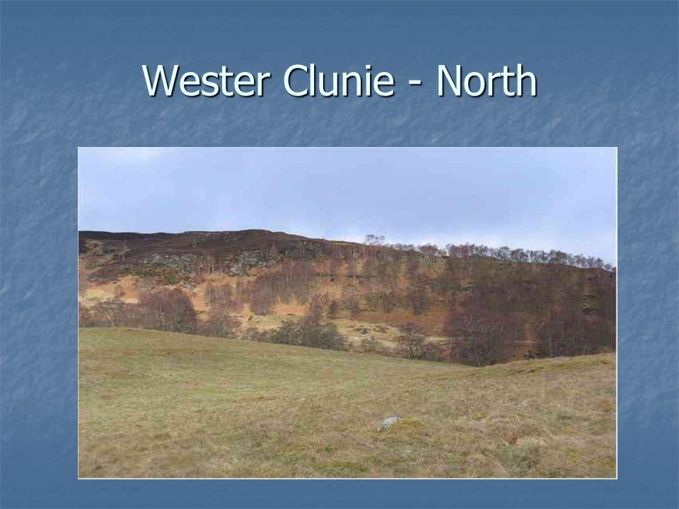 Wester Clunie - North