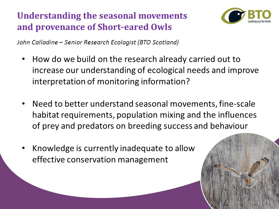 Understanding the seasonal movements and provenance of Short-eared Owls How do we build on the research already carried out to increase our understanding of ecological needs and improve interpretation of monitoring information.
