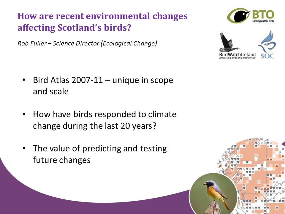 How are recent environmental changes affecting Scotland's birds.