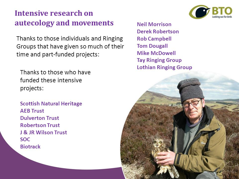 Surveys of inland-breeding seabirds and the next national seabird census Liz Humphreys – Research Ecologist (BTO Scotland) How can we best support JNCC and the other partners to provide a 4 th comprehensive census.
