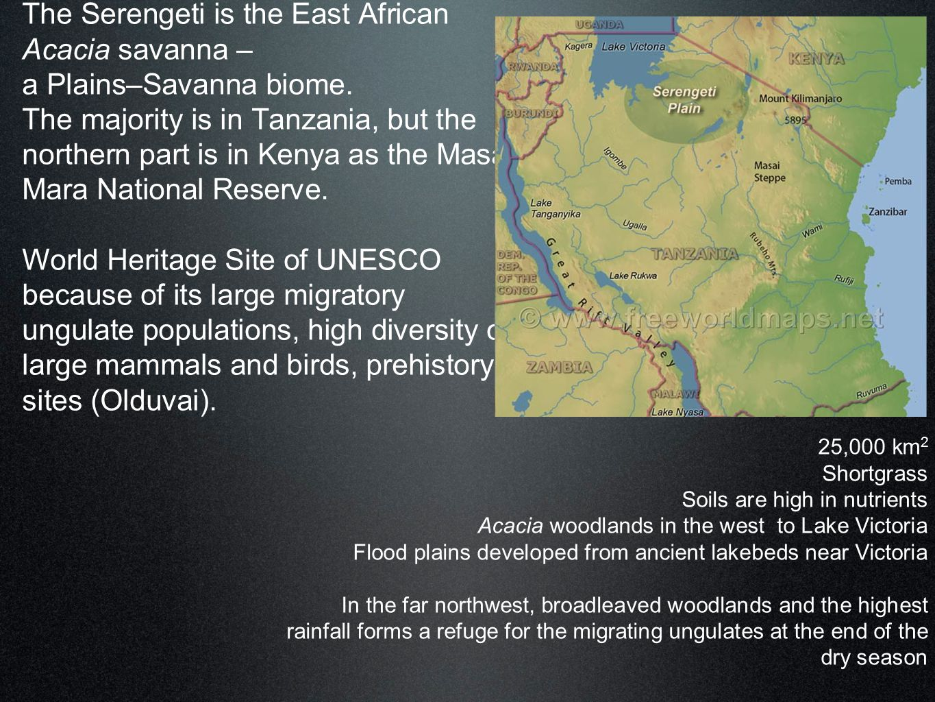 The Serengeti is the East African Acacia savanna – a Plains–Savanna biome. The majority is in Tanzania, but the northern part is in Kenya as the Masai