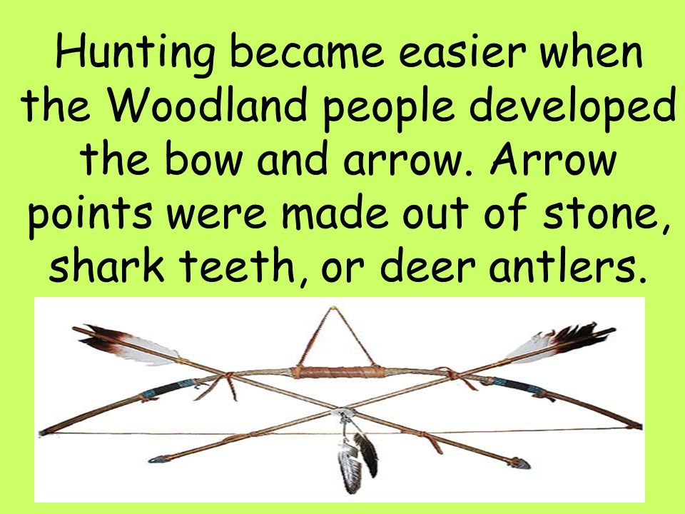 29 Hunting became easier when the Woodland people developed the bow and arrow. Arrow points were made out of stone, shark teeth, or deer antlers.