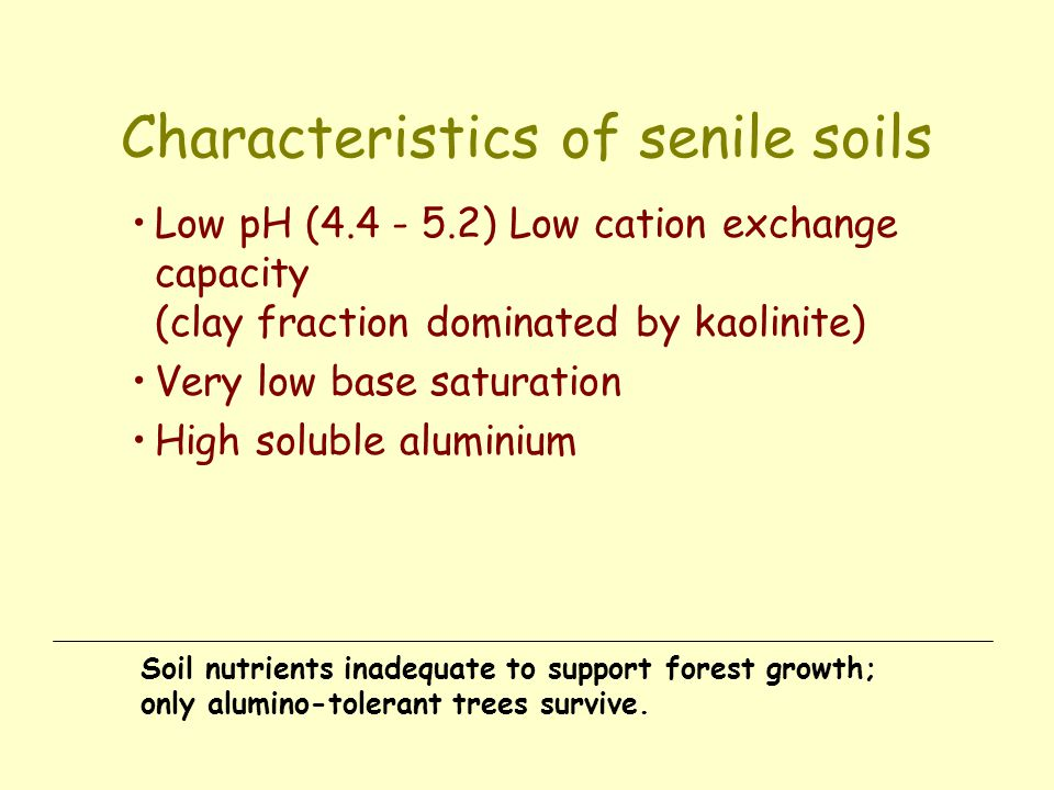 Characteristics of senile soils Low pH (4.4 - 5.2) Low cation exchange capacity (clay fraction dominated by kaolinite) Very low base saturation High s