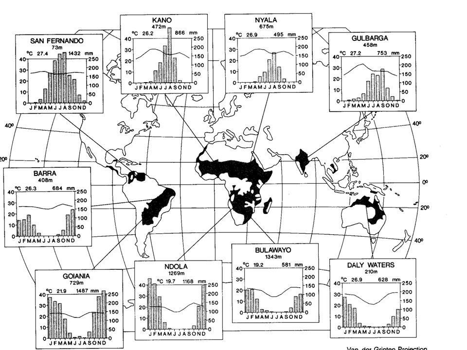 Serengeti dynamics Wolanski, E., et al., 1999.American Scientist, 87, 526-531 (Fig.