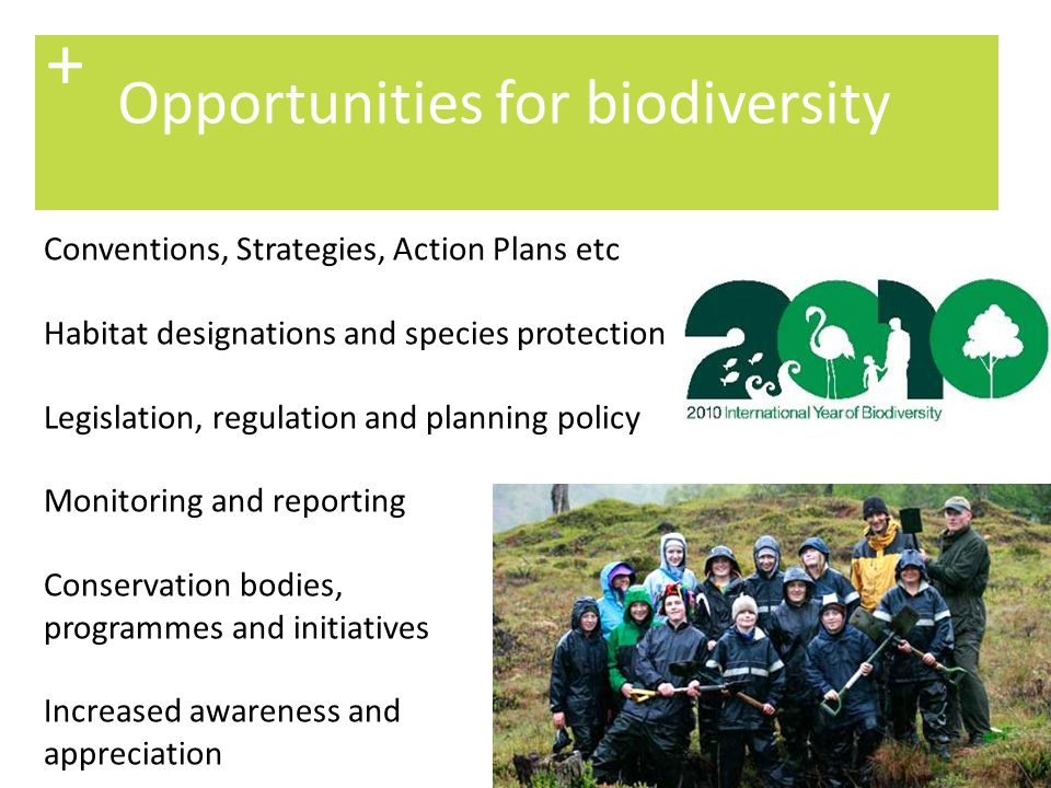 7 The UK approach + Following the Convention on Biological Diversity in 1992, the UK became the first country to produce a National Biodiversity Action Plan: Description of the biological diversity resources of the UK A detailed and targeted 20 year plan Habitat Action Plans (HAPs) – 65 now listed Species Action Plans (SAPs) for the most threatened species – 1150 now listed Local Biodiversity Action Plans (LBAPs) http://www.ukbap.org.uk/