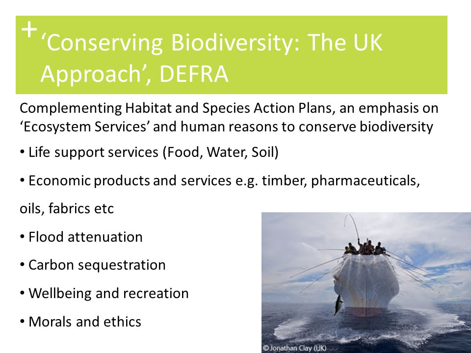 10 'Scotland's Biodiversity: Its in Your Hands' + A vision for Scotland's biodiversity for 2030: Halt the loss of biodiversity Responsibility, stewardship and awareness Attractive and diverse landscapes Integrated planning, policy and design Learning opportunities.