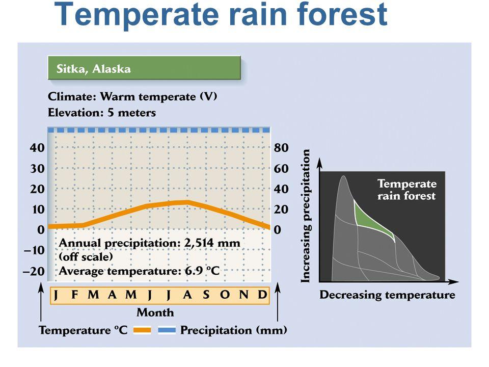 Temperate rainforest characteristics n Found at temperate latitudes, typically 40-60º (Northwestern U.S., S.