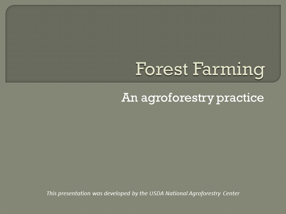 An agroforestry practice This presentation was developed by the USDA National Agroforestry Center