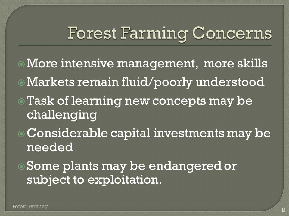  Open to the imagination  Making 'silk out of a sow's ear'  Local and regional markets  High value possibilities Forest Farming