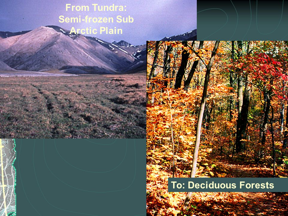 From Tundra: Semi-frozen Sub Arctic Plain To: Deciduous Forests