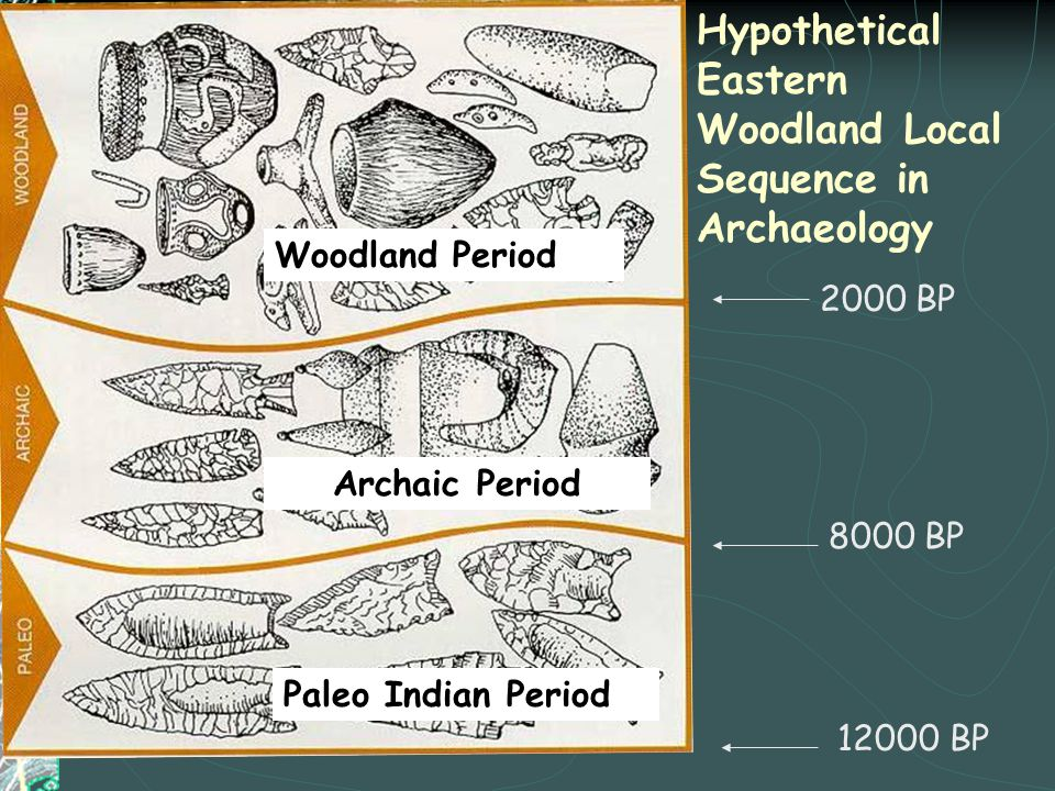 Hypothetical Eastern Woodland Local Sequence in Archaeology 12000 BP 8000 BP 2000 BP Paleo Indian Period Archaic Period Woodland Period