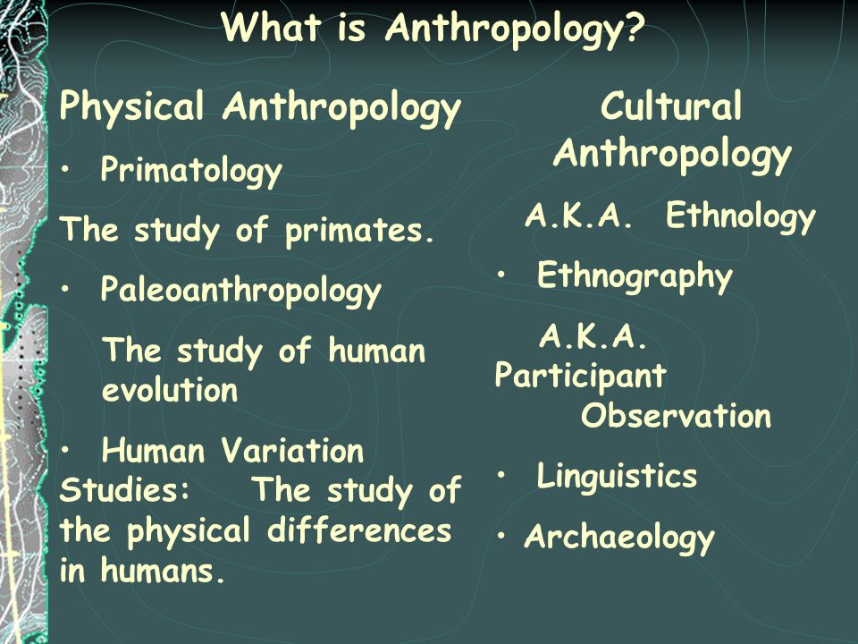 What is Anthropology? Physical Anthropology Primatology The study of primates. Paleoanthropology The study of human evolution Human Variation Studies: