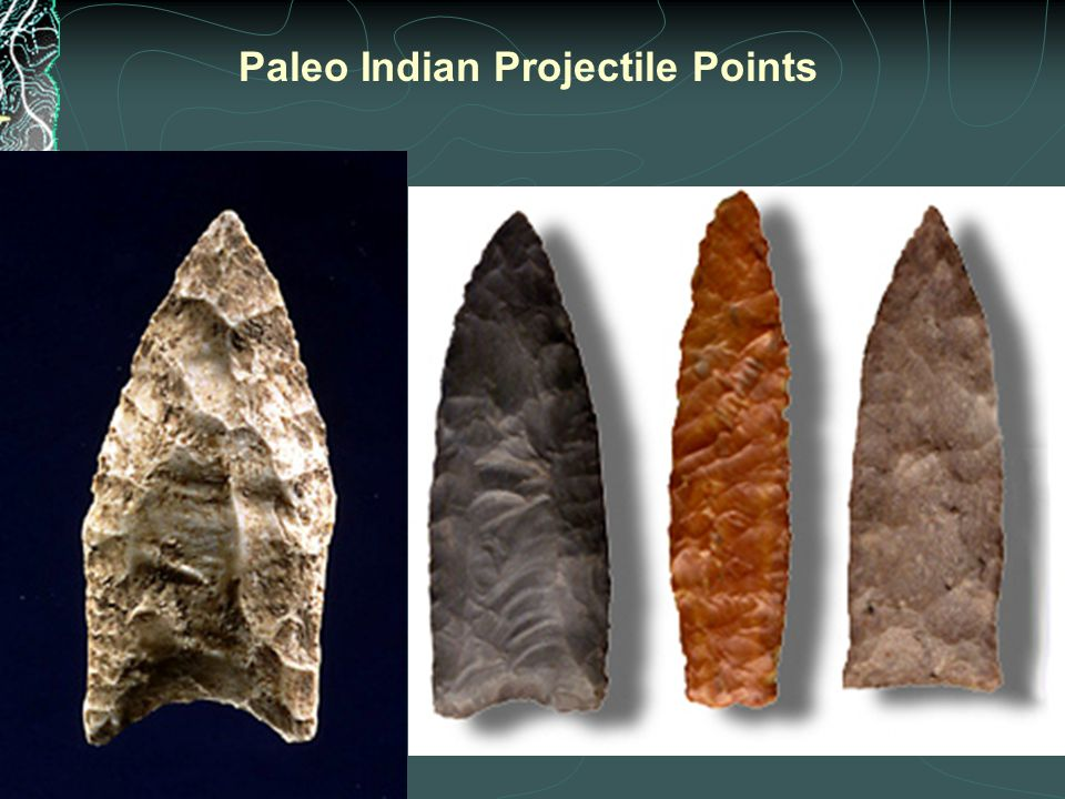 Paleo Indian Projectile Points