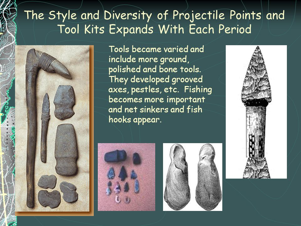 The Style and Diversity of Projectile Points and Tool Kits Expands With Each Period Tools became varied and include more ground, polished and bone too