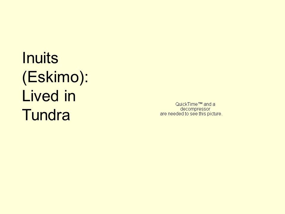 Inuits (Eskimo): Lived in Tundra